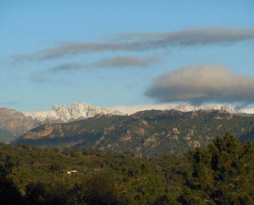 Vente terrain à Pinarello